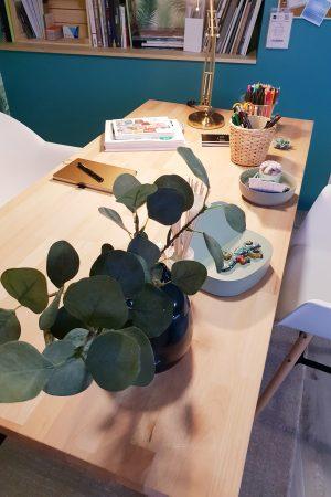 Nouvel espace bureau au style jungle et scandinave
